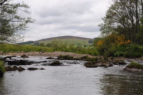 looking East upstream on the top pool of t6he river Deveron
